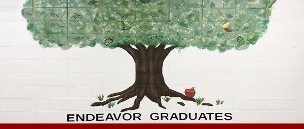 alumni-graduate-tree